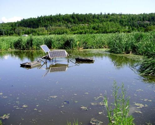 Municipal wetland